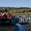 Expedition Cruise aboard M/V Stella Australis and M/V Via Australis, Tierra del Fuego, Patagonia, Chile & Argentina