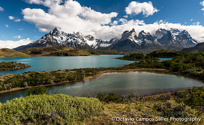 © Octavio Campos Salles Photography