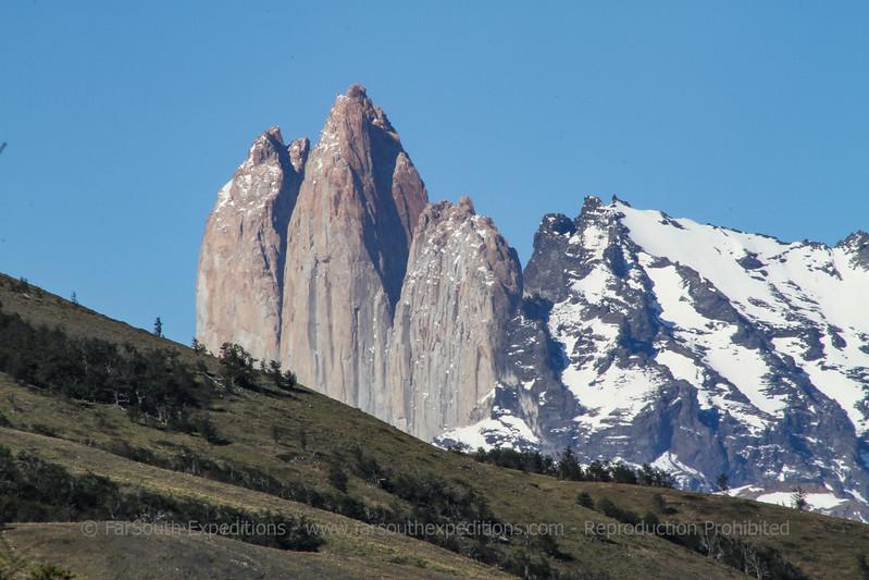 Wild Horses of Patagonia