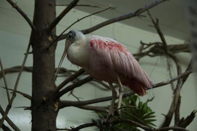 10.07.10~Hershey Zoo