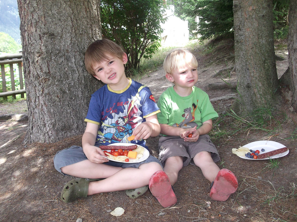 We had a nice picnic lunch in the shade of a tree