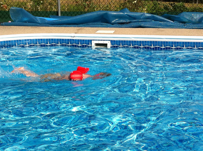 018 Diving Dan