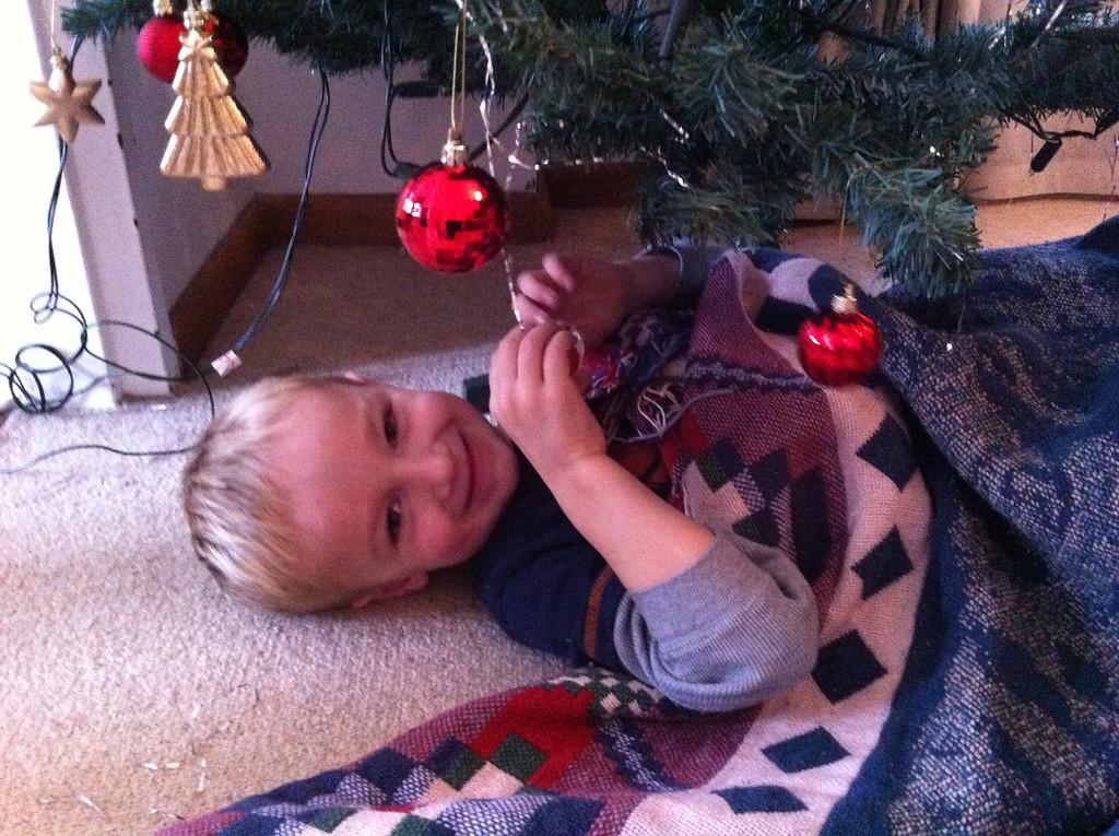 Danny wants to sleep under the tree