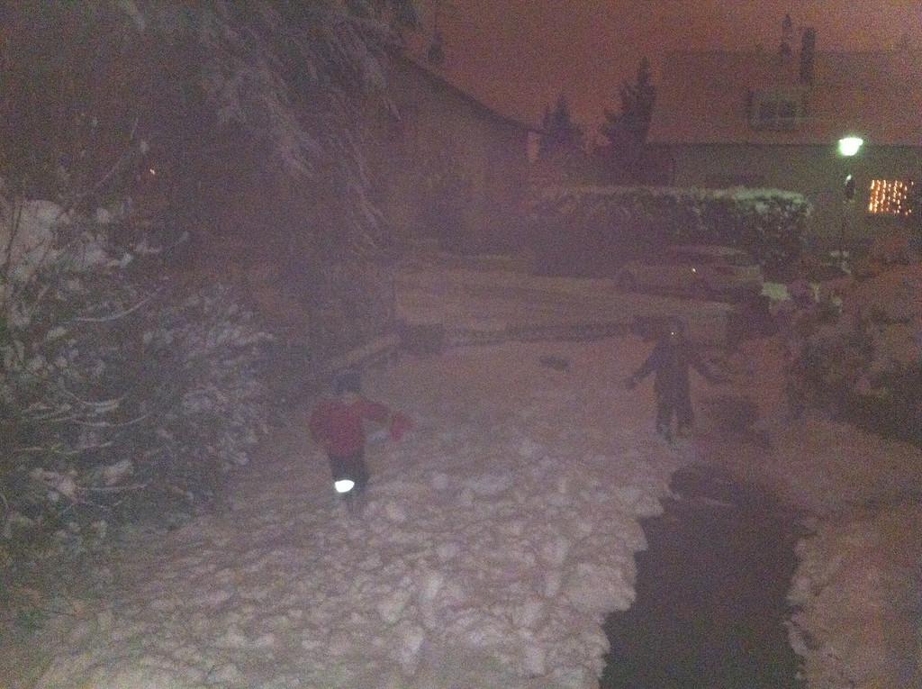 020 Nighttime Snow Angels