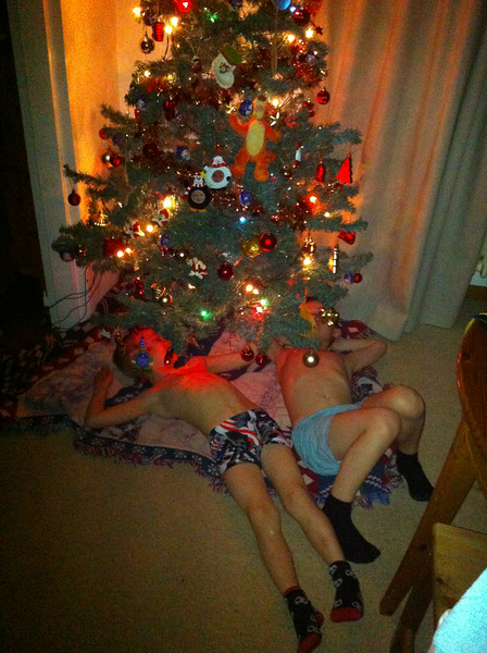 015 Sleeping under the Tree