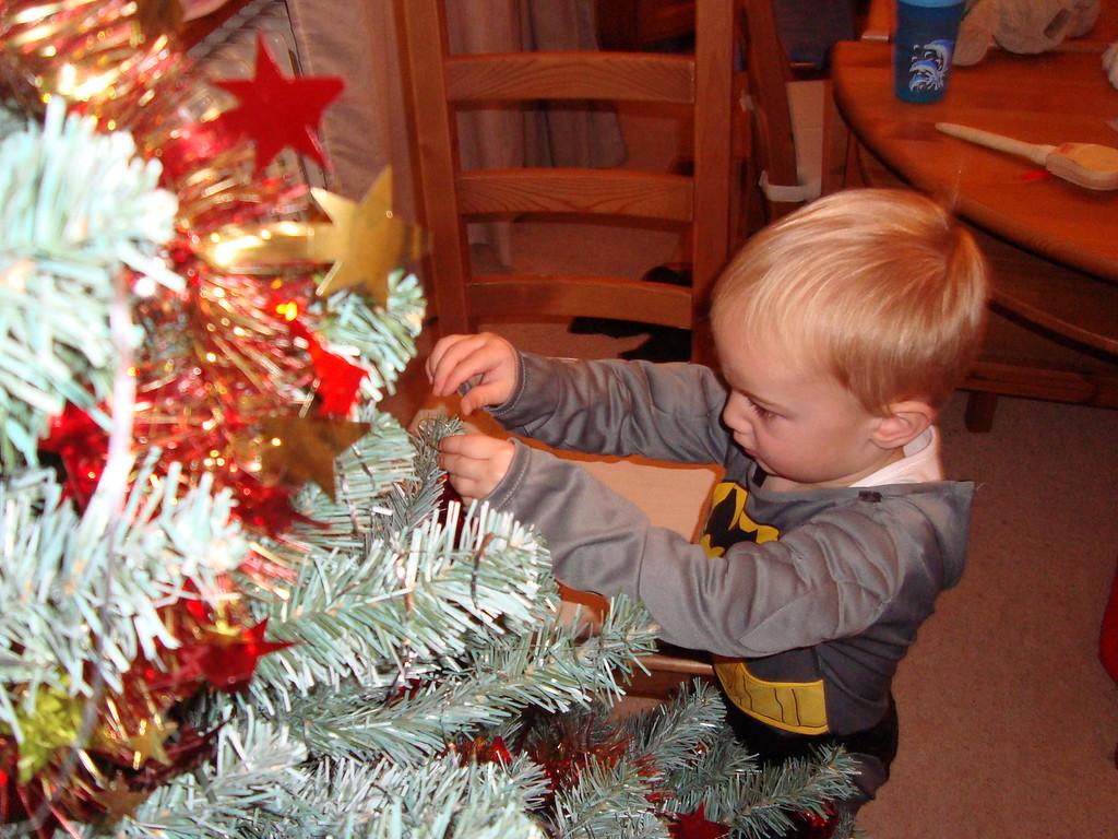009 Decorating the Tree