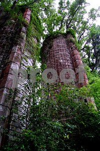 An old, overgrown silo hidden in the woods.