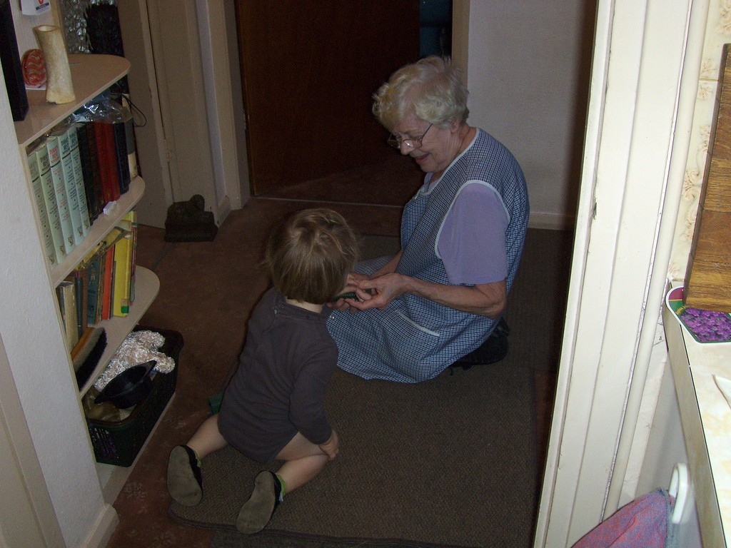 Jack helping Grandma to get the dog fur up off the carpet