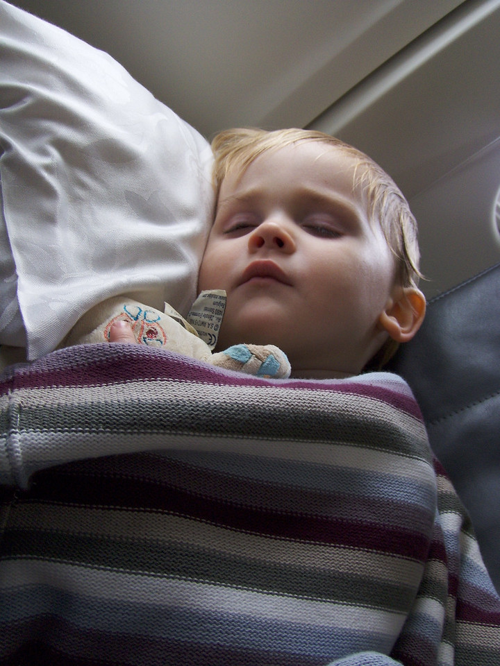 Jack (& Horace) slept for almost the whole flight