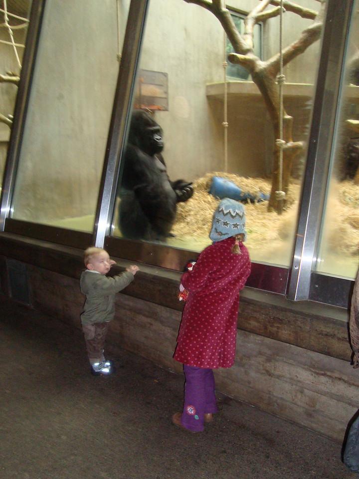 043 Monkey Likes Monkies