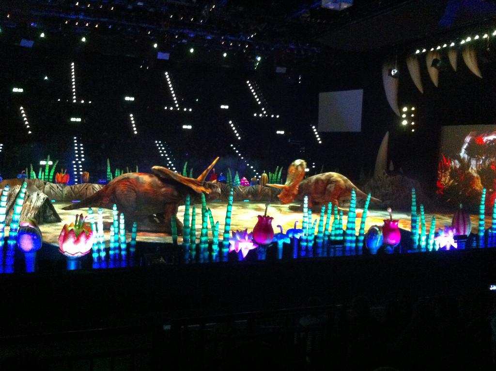031 Triceratops