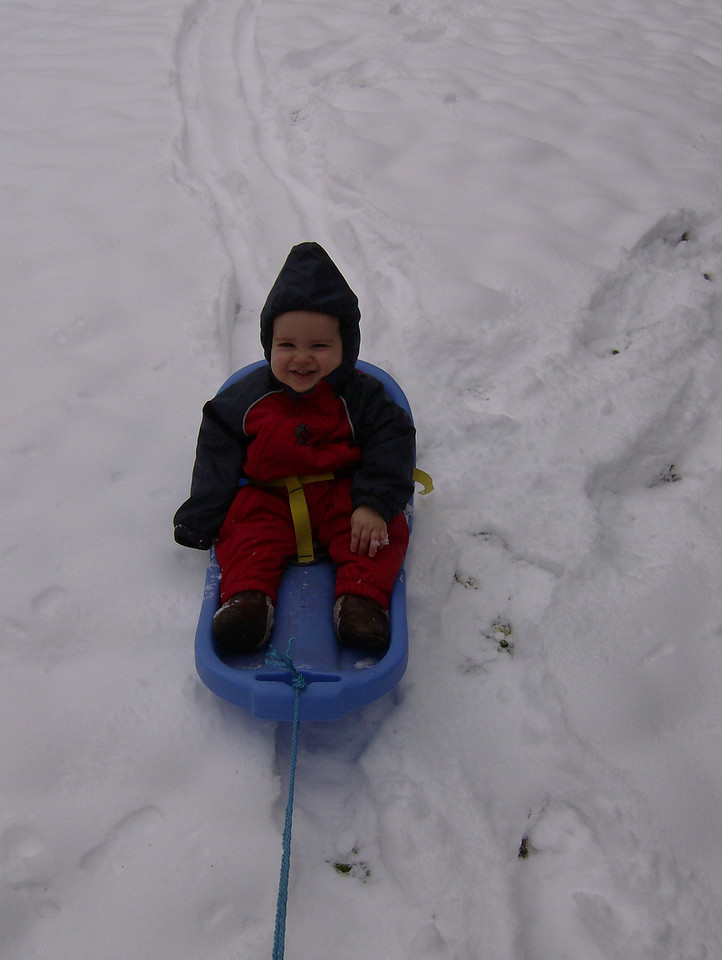 He really enjoyed being pulled around the garden on his sledge though!