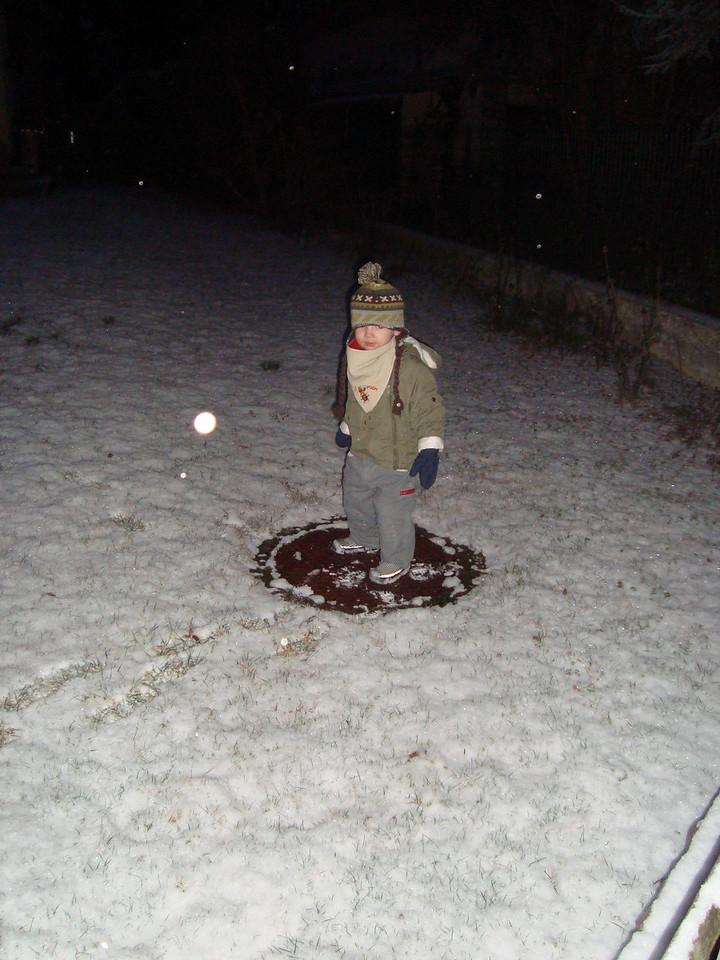 011 Snowy Basel