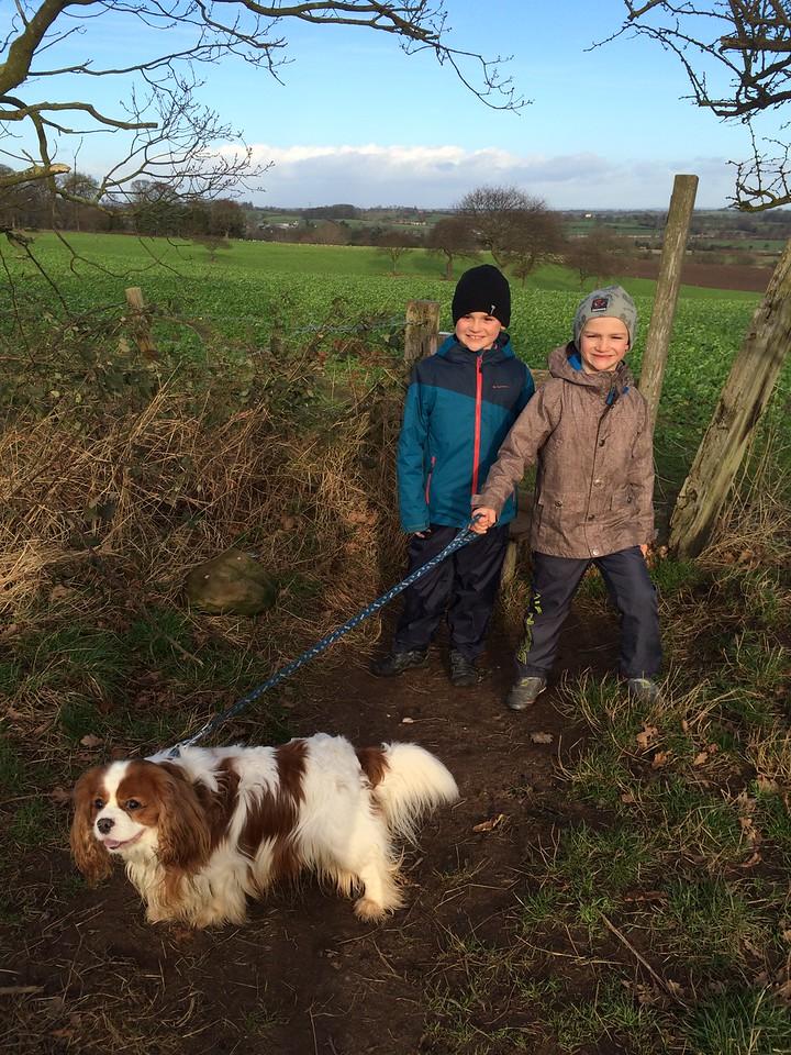 031 Beautiful Walk with Bertie