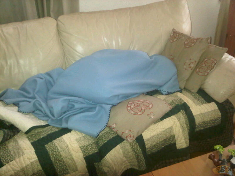 Danny was sick when we got back, Mike stayed home with him and after he went to get a shower found him asleep on the sofa like this ...
