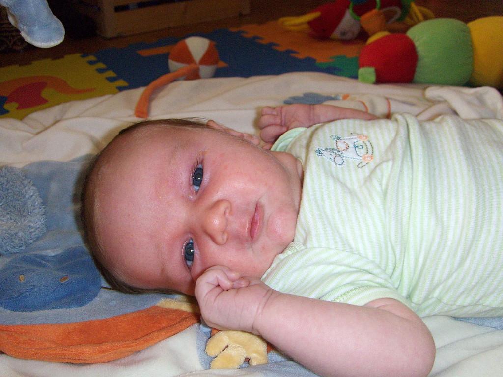 Gorgeous Daniel - 5 weeks old.