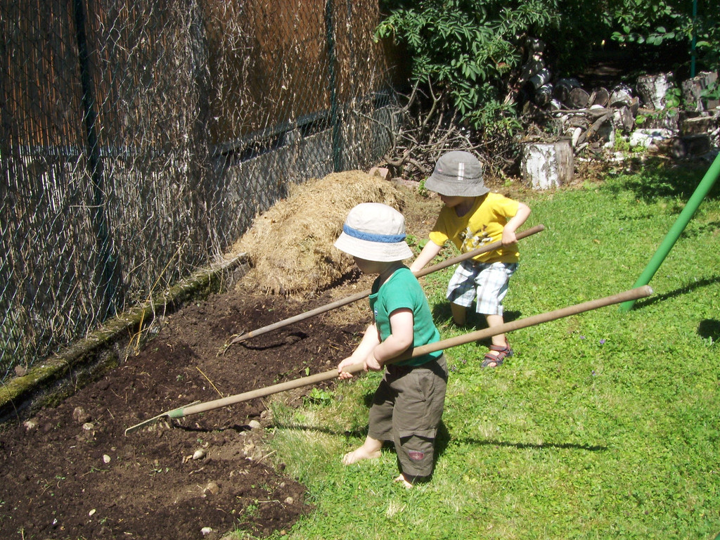 Fraser came over & helped Mike in the garden; Jack & Findlay were hard workers too!