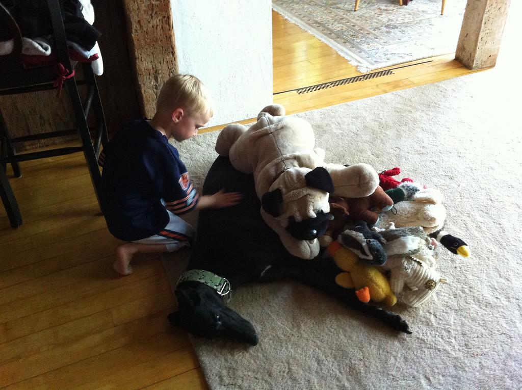 "Danny wanted to make sure the dog had enough ""doo-doo's"" for his nap :)"