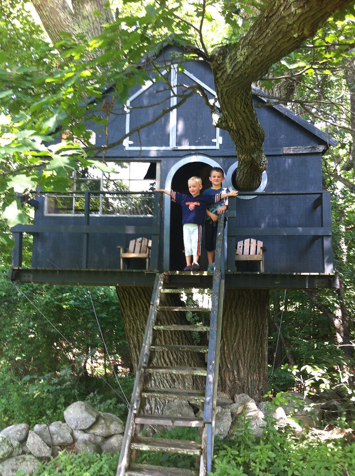 The boys loved this treehouse