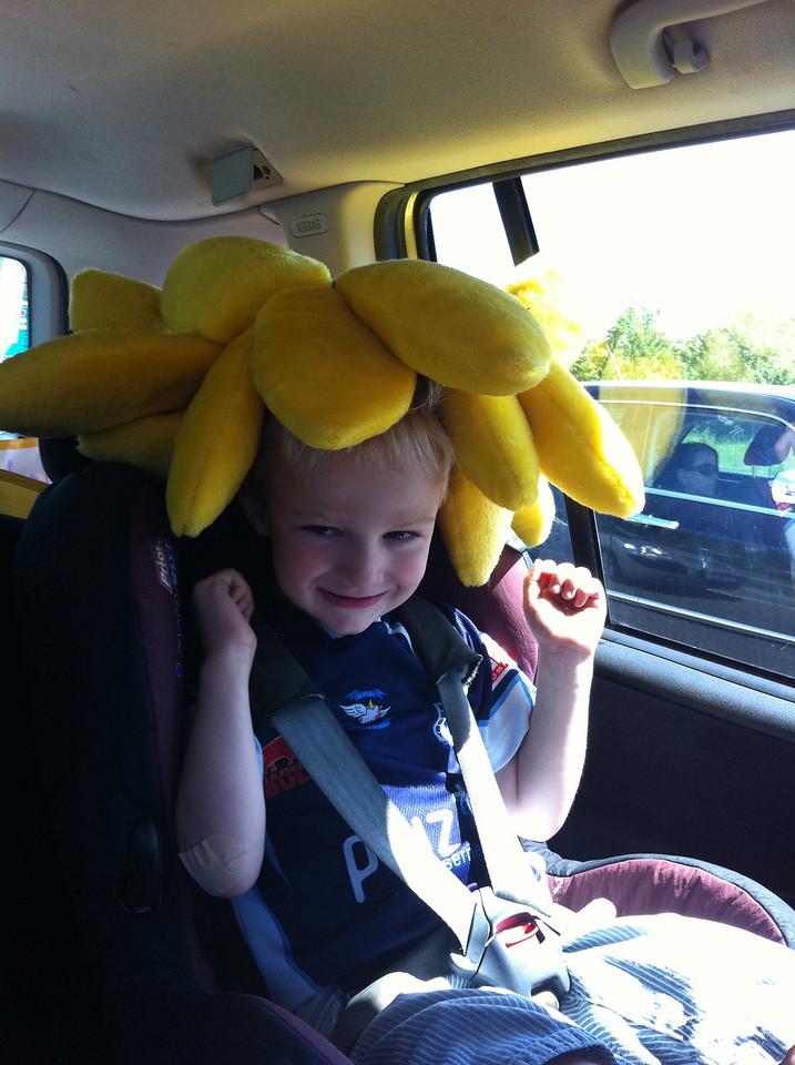 002 Sunshine Boy