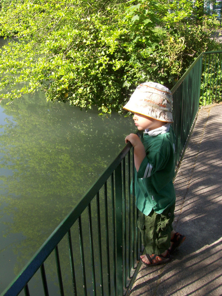 We stopped for a while to watch some turtles swimming by