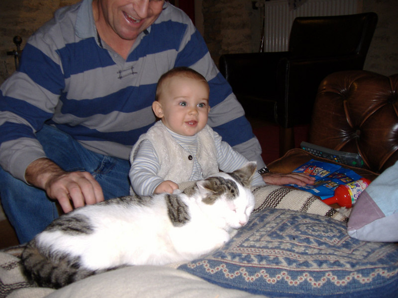 Philip, Susie & Louis invited a bunch of us who were at Vivenne & Michael's wedding around for Sunday afternoon tea, it was lovely. This is the most relaxed cat in the world, he just lay there whilst Jack patted & pulled his fur. Jack was delighted!