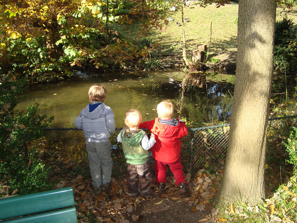 Jack, Danny & Jake looking for fishies