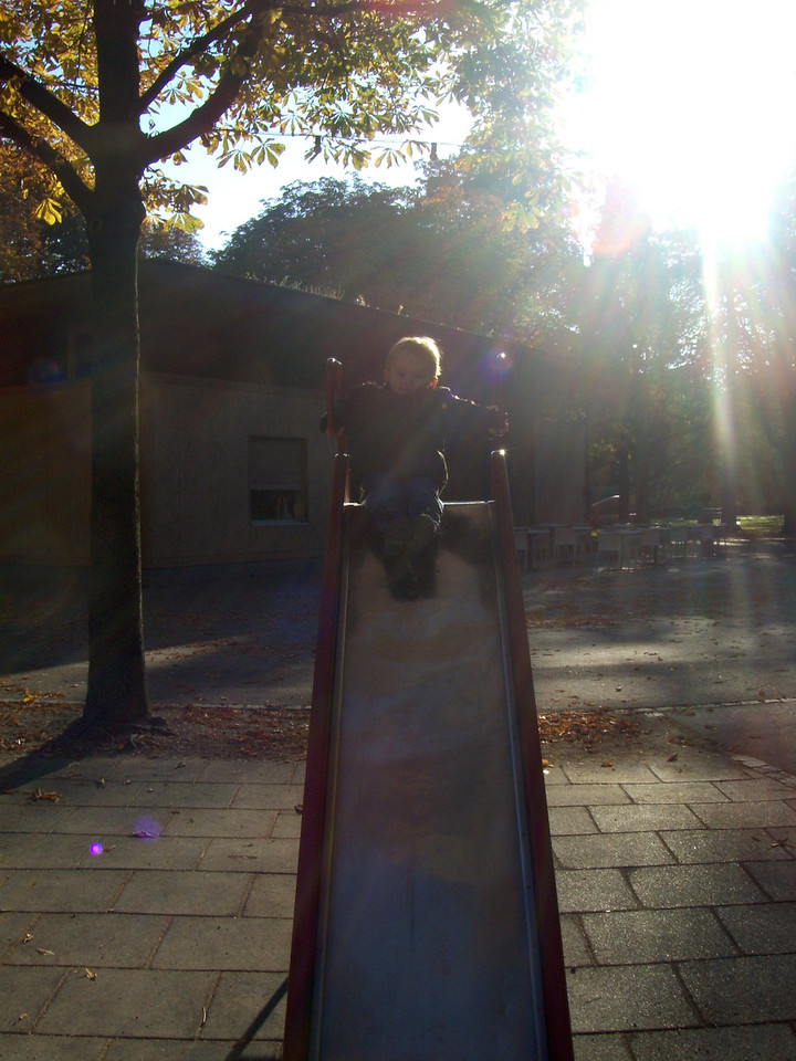 Playing in Schutzenmattpark after Saturday morning swim class as the sun comes over the trees