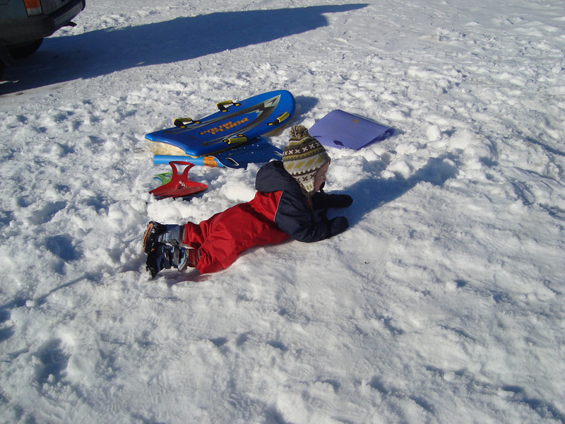 Danny loved sledging for a couple of runs, but got tired of it pretty fast. Then he was happy to just lie around & swim in the snow