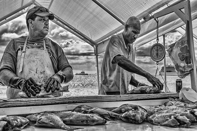 Business as Usual in the Fish Market, Grand Cayman Island