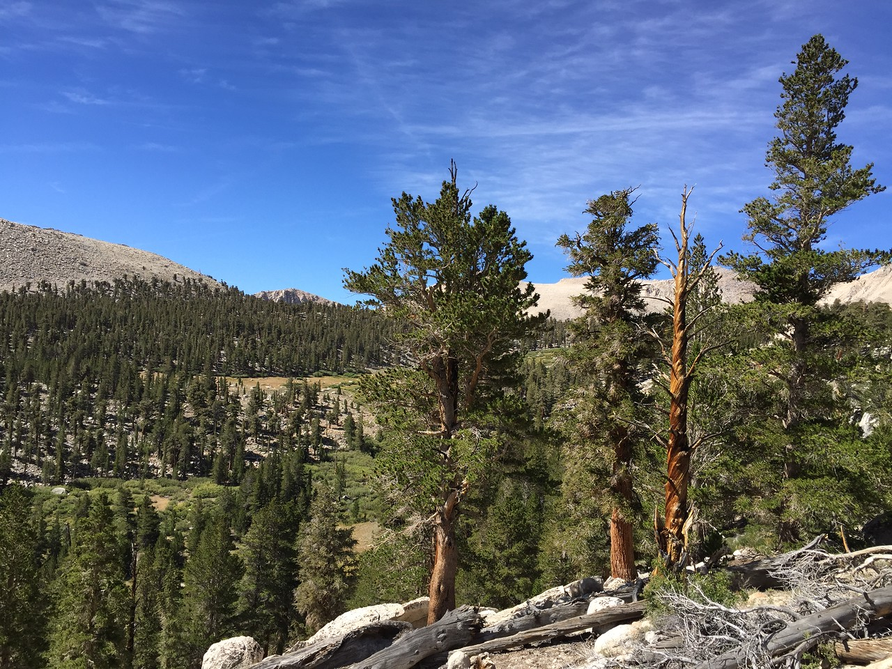 The view on our way up to the Cottonwood Lakes