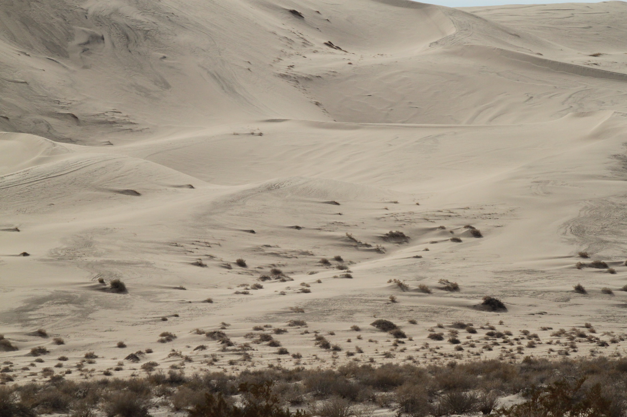 It's weird how obvious it is which way the wind blows at Eureka Dunes.
