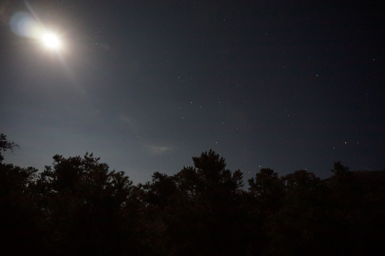 The moon and stars are amazing from Mahogany Flats campground