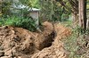 Trenching down the hill to third faucet by Norway spruce...