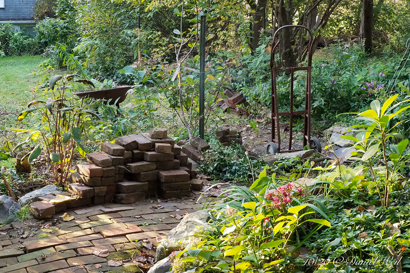 For the installation of a new water line from the well to the greenhouse, I had to take up half of the Winding Path.  Luckily all the materials are where I can grab them and put them back.  I hope.  Like a jigsaw puzzle....