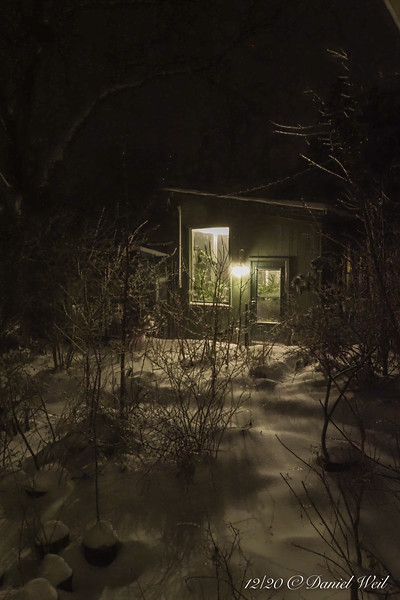 The greenhouse lights, shining out over the snow.  Thank G-d, there hasn't been a power outage.