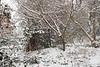 Midway through snow