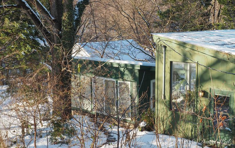 Chickenhouse, L, greenhouse, R, huge old black walnut.