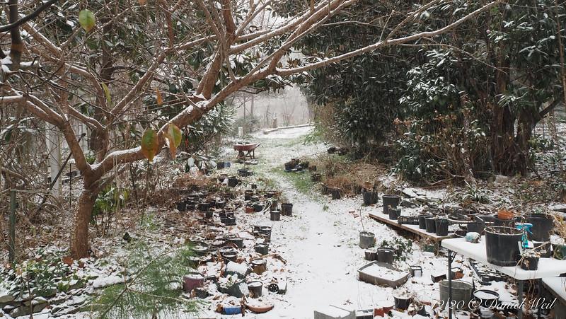 Beginning of snowstorm, N alley