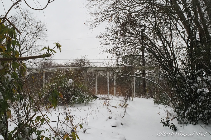 Towards the end of the snow, courtyard