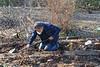 Putting the soil around the new magnolia.