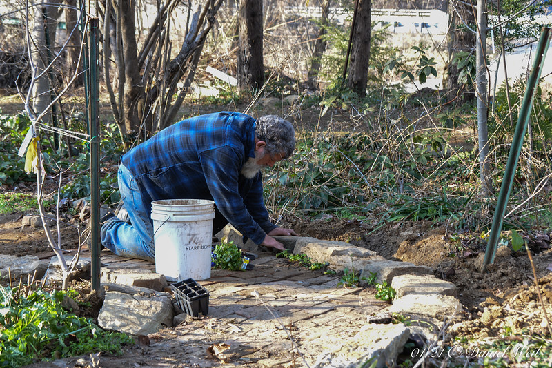 Irregular stones/bricks give you all sorts of planting pockets.