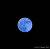 ...Which makes it a blue moon.  Thank you, Dan.  Thank you, Photoshop.