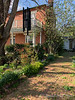 Staphylea, woods hyacinths, box, nandina. Main walk, Courtyard