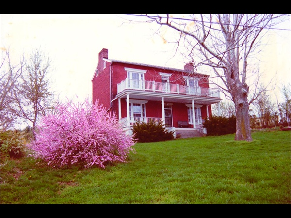 Thes was our house when we got here.  Seven trees, nine shrubs, nothing else.