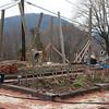 Constructing large arbor 2012