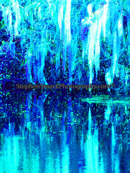 "Stylized Spanish Moss water reflection called ""Blue Bayou""."