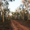 Australian landscapes and scenes - Burrandana.