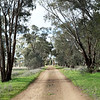 Around Our Country - Old Junee and Surrounds.