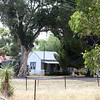Around Our Country - Daysdale and Surrounds.